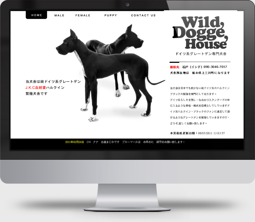 wild dogge house